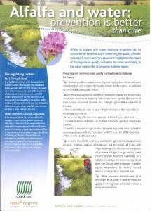 Alfalfa & Water